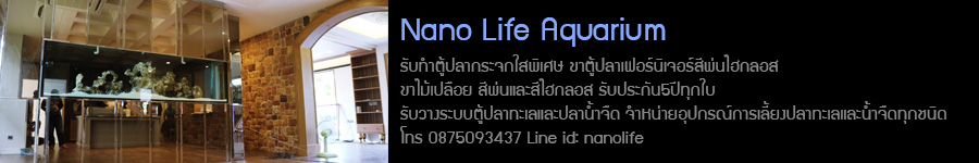 Nanolife